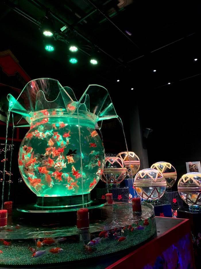 Art Aquarium Nihonbashi สายอาร์ทกับสายน้ำและเหล่าปลา