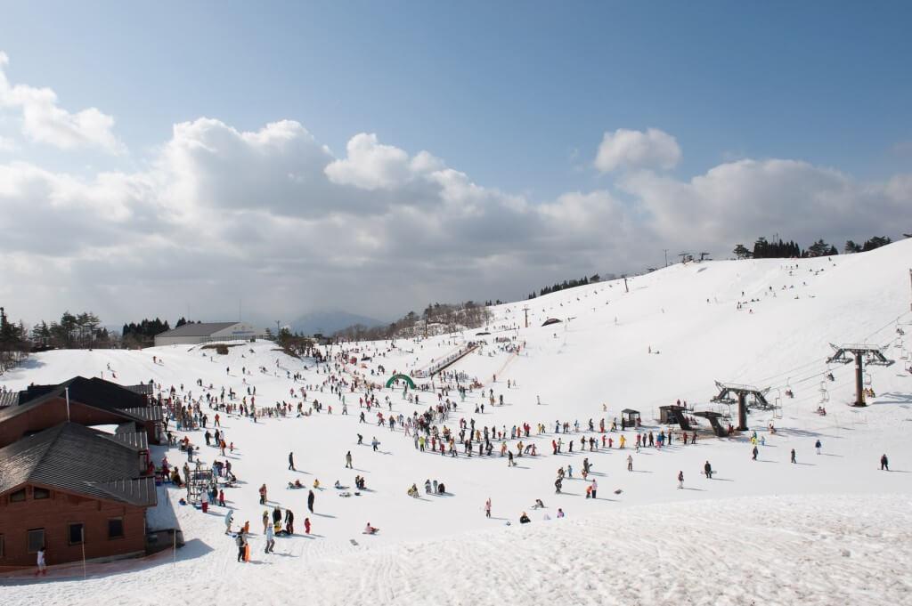 5 ที่เล่นหิมะไปง่าย ใกล้โอซาก้า
