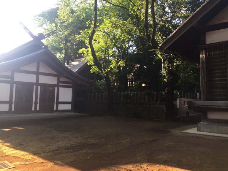 บ้านเล็กๆของ โตโตโร่ (TOTORO) @SHINJUKU