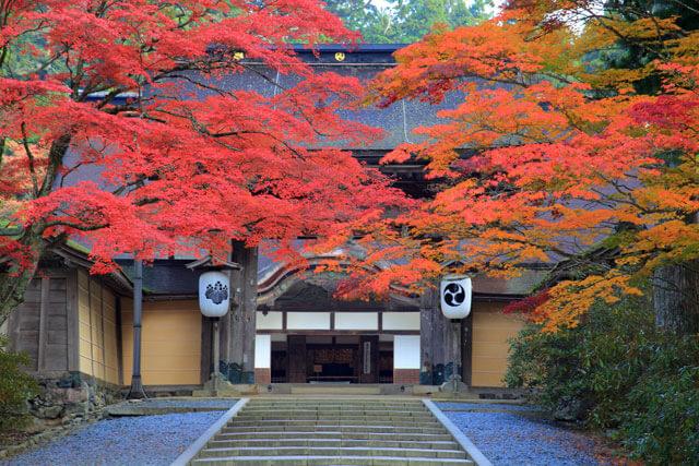 10 จุดชมใบไม้แดงคันไซ สวยและเดินทางง่าย จากโอซาก้าไม่เกิน 2 ชม.