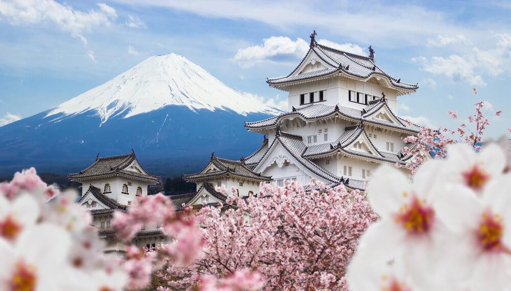 Sakura Japan image