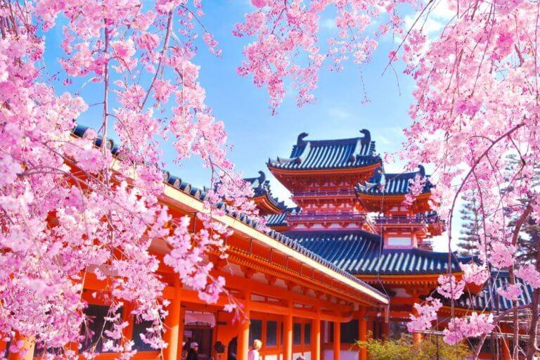 ไปชมซากุระกับ 7 วัดและศาลเจ้าชื่อดัง ในเกียวโตกันเถอะ