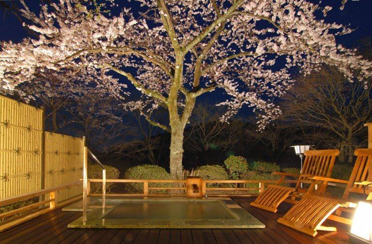 ชมซากุระไปพลางแช่ออนเซ็นไปพลางกับ 4 ที่พัก คานากาวะ/ยามานาชิ ใกล้โตเกียวนิดเดียวเอง