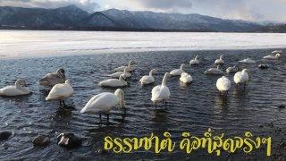 Lake_190301_0004