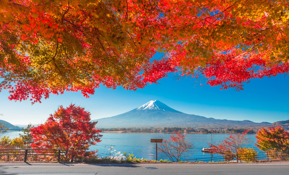 คู่มือท่องเที่ยวญี่ปุ่น เดือนพฤศจิกายน