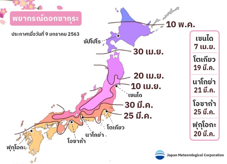 พยากรณ์ดอกซากุระบานทั่วประเทศญี่ปุ่นปี 2563 บานเมื่อไหร่ นี่คือคำตอบ!