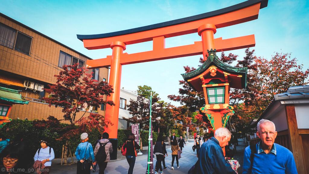 Autumn in Kyoto ตอน ลอดซุ้มประตูสีแดง ชมแสงไฟยามค่ำคืนกับบรรยากาศลมหนาวเดือนพฤศจิกายน