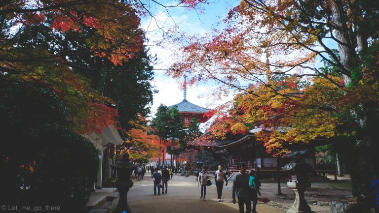 Autumn in Kansai ตอน ตามหาความสงบท่ามกลางใบไม้แดงบนภูเขาแห่งความศักดิ์สิทธิ์