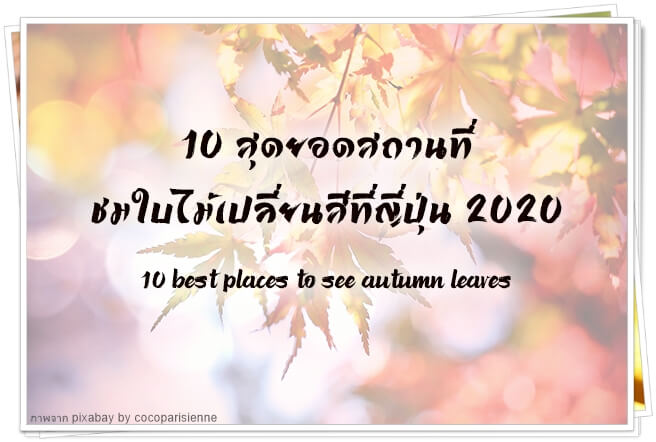 10 BestAutumnJP