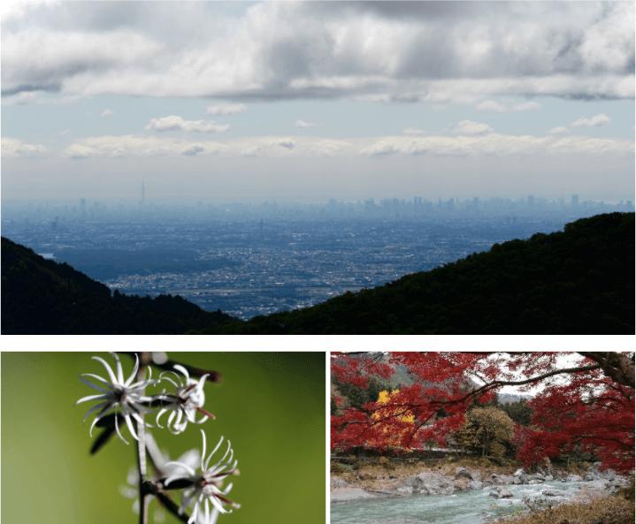 งดงามในความเงียบ กับสถานที่ไม่พลุกพล่านทั้งในและใกล้ๆ โตเกียว