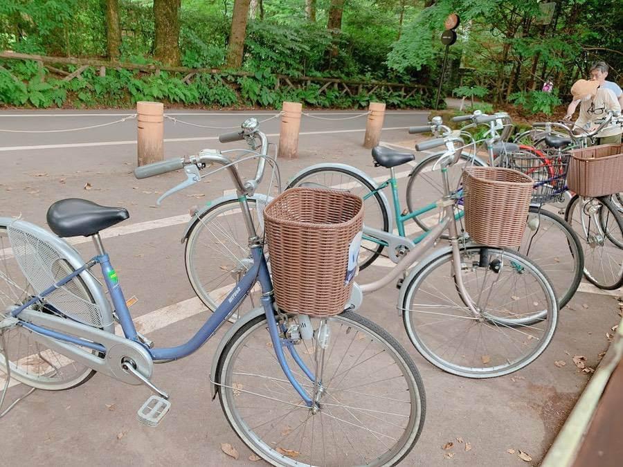 หน้าร้อนสุขสันต์เที่ยวชมธรรมชาติที่ เมืองตากอากาศชื่อดังคารุอิซาวะ และล่องแก่งที่ไซตามะ