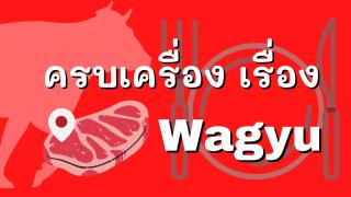 wagyu