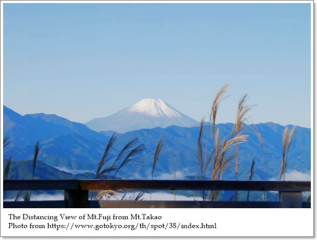 วันหนึ่งฉันเดินเข้าป่า…ที่ญี่ปุ่น (Most Famous Forests & Mountains in Japan)