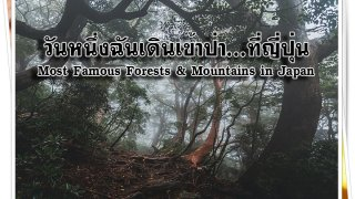 Cover_Forest & Mountain one day-671c96d0